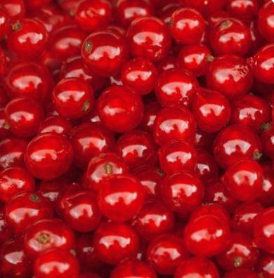 pirosribizlibor édes gyümölcsbor villányi mokos pincészet minőségi édes gyümölcsbor